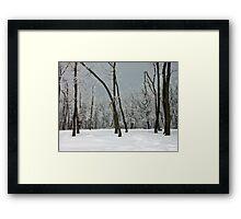 Crystallized trees in snowy Dobogókő, Hungary Framed Print