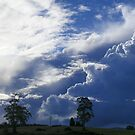 storm clouds - snow on the way last week by gaylene