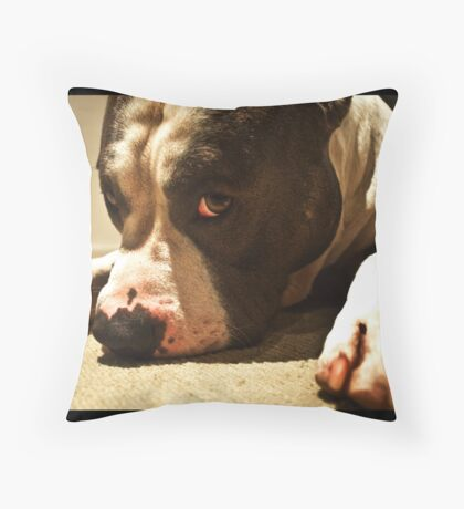 Sooky boy Throw Pillow