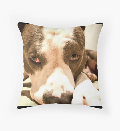 Sooky Diesel Throw Pillow