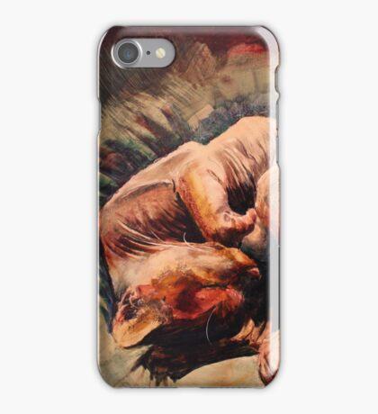 Sphynx cat iPhone Case/Skin