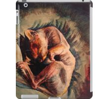 Sphynx cat iPad Case/Skin