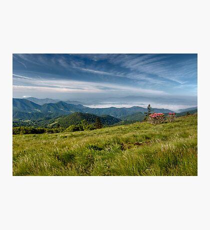 Along the Blue Ridge Photographic Print