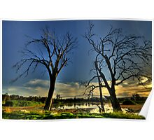 Guardians - Wonga Wetlands, Albury, NSW - The HDR Experience Poster