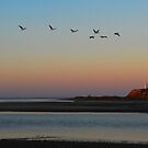 Return of 7th Squadron at Dusk by Wayne England