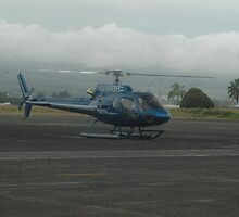 Blue Hawaiian Helicopter by timason