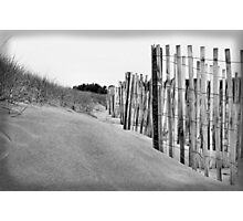 Silver Shores Photographic Print