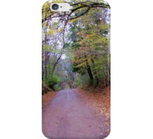 Road to the unknown. iPhone Case/Skin