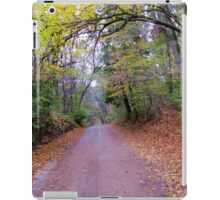 Road to the unknown. iPad Case/Skin