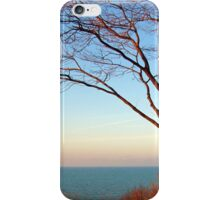 Sunset with the tree in setting sunlight. iPhone Case/Skin