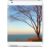 Sunset with the tree in setting sunlight. iPad Case/Skin