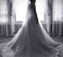The Beautiful Bride by lisabella