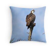 Osprey 2 Throw Pillow