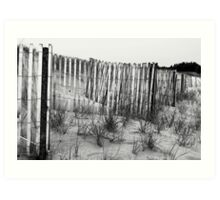 Weathered Shores Art Print