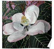 magnolia flower acrylic painting Poster