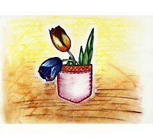 Pocket tulip Photographic Print