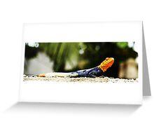 Cameroon Lizard Greeting Card