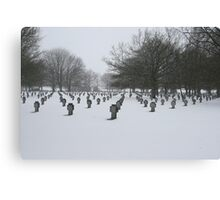 War Graves Canvas Print