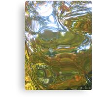 Untitled - Fall Mystery Canvas Print