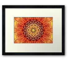 Beautiful flower center. Framed Print