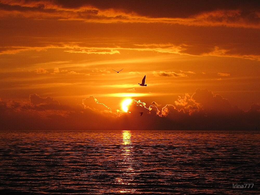 Sunset by Irina777