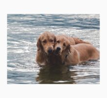 Two Swimming Golden Retrievers In Lake George One Piece - Short Sleeve