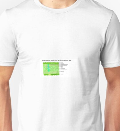 A transverse section of an Angiosperm leaf. Unisex T-Shirt