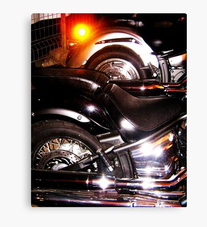 Shiney Canvas Print