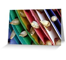 Colourful culture Greeting Card