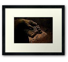 Hand of a Gorilla. Framed Print