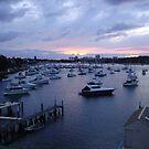 Burraneer Bay Sunrise by Brandon Galwey