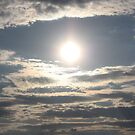 The Sun's Halo by Stormy Brannan