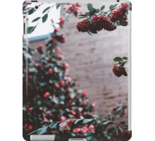 seattle flowers. iPad Case/Skin