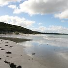 """Vivonne Beach, Kangaroo Island"" by Gail Mew"