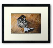 seattle cat. Framed Print