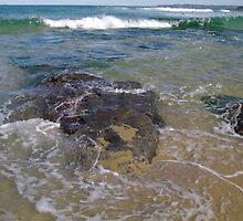 Rhythm Of The Sea by reflector