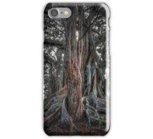 Banyan Trees Pt 1 iPhone Case/Skin