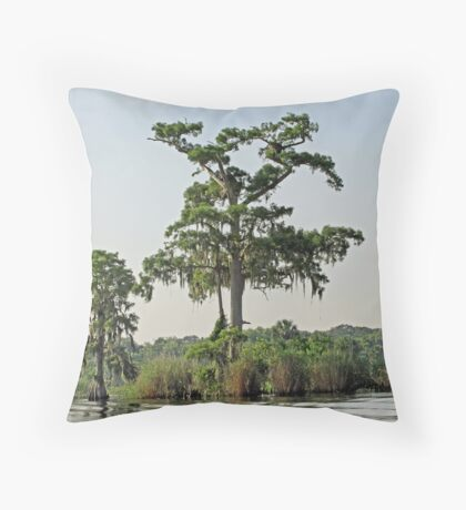 On the Banks of the St. Johns River 1 Throw Pillow