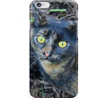 The Cat's Meow iPhone Case/Skin