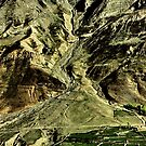 detail. northern indian himalayas by tim buckley | bodhiimages