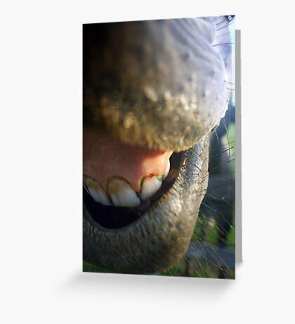 Needs Dental Work Bad Greeting Card