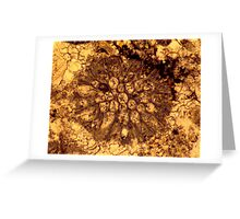 Bryozoan fossil thin-section from Usk, Monmouthshire Greeting Card