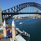 Sydney Harbour, from Luna Park by John Douglas