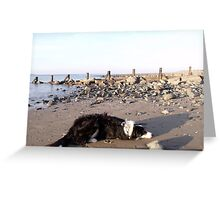 Beached. Greeting Card