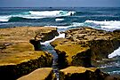 La Jolla Shoreline by photosbyflood
