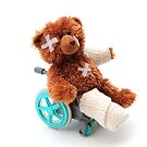Bear in a wheelchair by faithimages