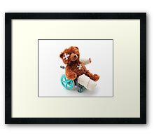 Bear in a wheelchair Framed Print