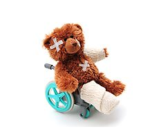 Bear in a wheelchair Photographic Print