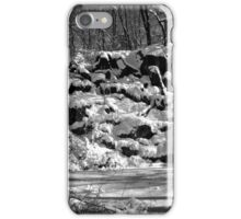 NYC Central Park Winter 2 iPhone Case/Skin
