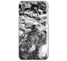 NYC Central Park Winter 3 iPhone Case/Skin